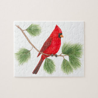 Rompecabezas cardinal septentrional