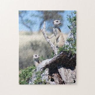 Rompecabezas - centinelas de Meerkat