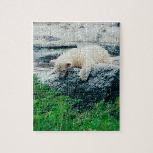 Rompecabezas curioso del oso polar del bebé