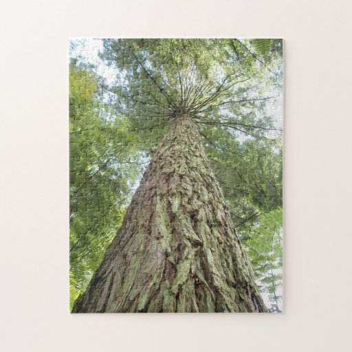 Rompecabezas de árboles hermosos
