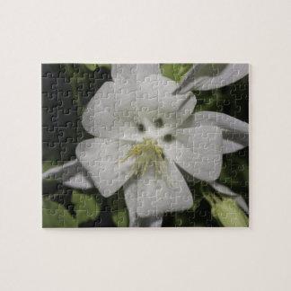 Rompecabezas de la flor blanca