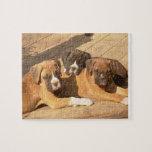 Rompecabezas de la foto de los perritos 8x10 del b