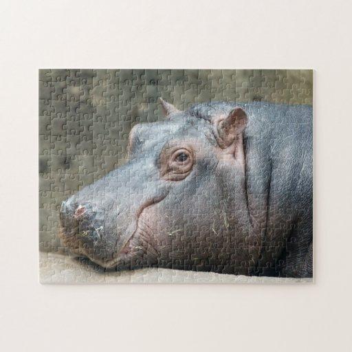 Rompecabezas de la foto del Hippopotamus