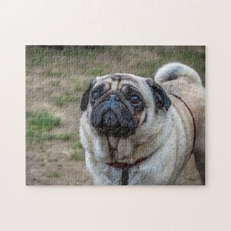 Rompecabezas de la foto del perro del barro