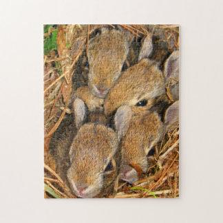 Rompecabezas de la jerarquía del conejito