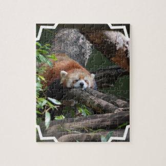 Rompecabezas de la panda roja el dormir