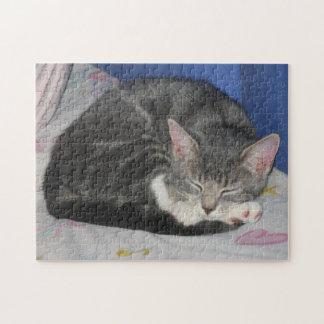 Rompecabezas de la siesta del gatito de las manopl