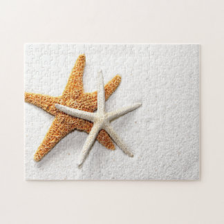 Rompecabezas de las estrellas de mar
