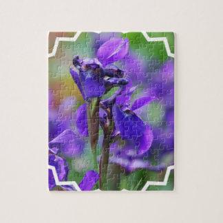 Rompecabezas de los iris