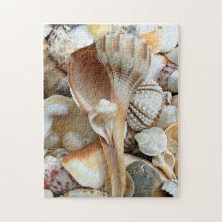 Rompecabezas de los Seashells del bucino de la ilu