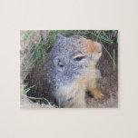 Rompecabezas del agujero de Groundhog