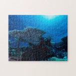 Rompecabezas del arrecife de coral