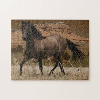 Rompecabezas del arte de la protección del caballo