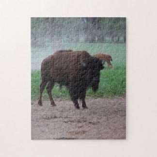 ROMPECABEZAS del búfalo de Kansas (bisonte)