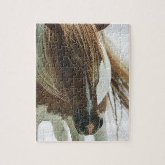 Rompecabezas del caballo salvaje del mustango