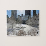 Rompecabezas del Central Park de New York City Man
