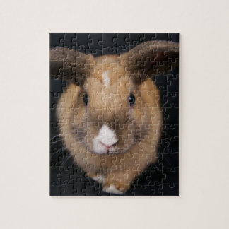 Rompecabezas del conejo de conejito de MHRR Honeyb