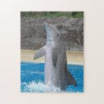 Rompecabezas del delfín del baile