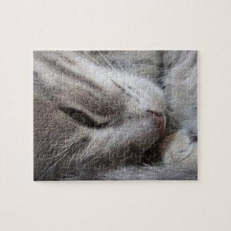 Rompecabezas del gato el dormir