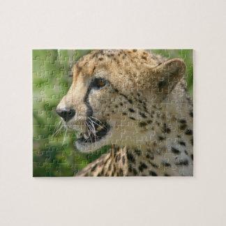 Rompecabezas del guepardo del gruñido
