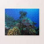 Rompecabezas del mar de coral