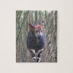 Rompecabezas del Okapi