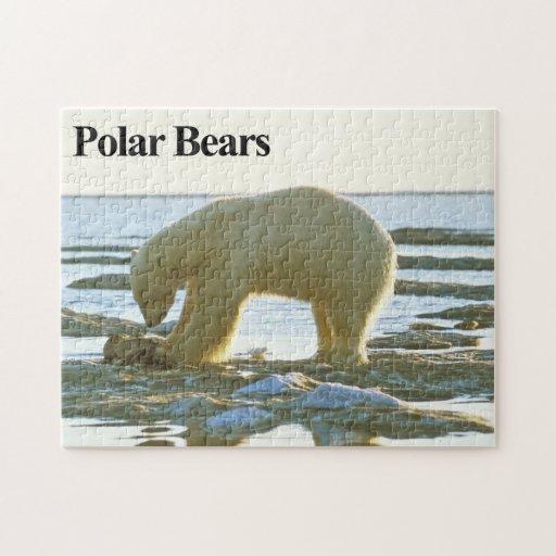 Rompecabezas del oso polar 10
