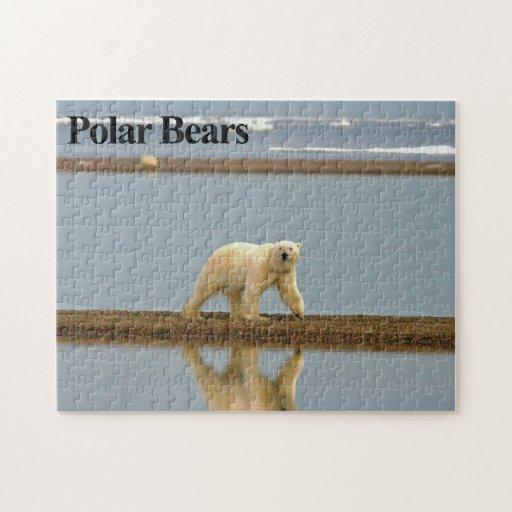 Rompecabezas del oso polar 9
