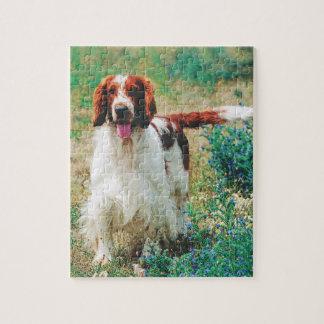 Rompecabezas del perro de aguas de saltador galés