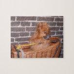 Rompecabezas del perro de Pomeranian
