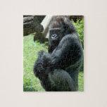 Rompecabezas del resplandor del gorila