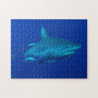 Rompecabezas del tiburón del filón