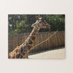 Rompecabezas divertido de la jirafa