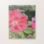 Rompecabezas floral color de rosa pintado del jard