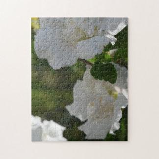 Rompecabezas floral fotografiado