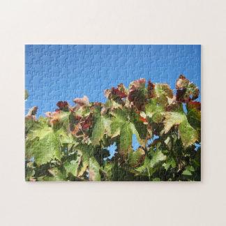 Rompecabezas: Follaje de la uva del otoño