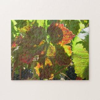 Rompecabezas - hoja de la uva roja en vid