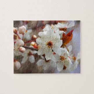 rompecabezas impar de la flor de cerezo de 8 pétal
