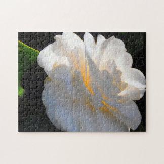 Rompecabezas ligeros de la magnolia