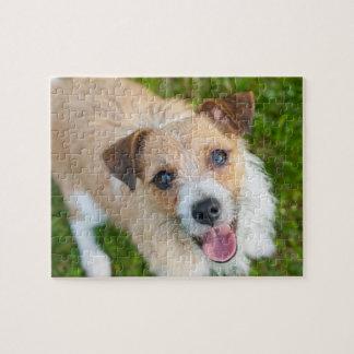 Rompecabezas lindo de la foto del perro del terrie