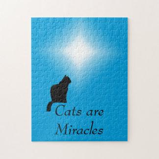 Rompecabezas - los gatos son milagros