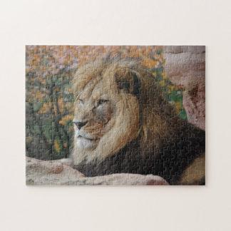 Rompecabezas masculino del león