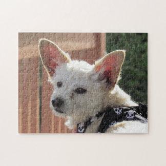 Rompecabezas - pequeño perro blanco