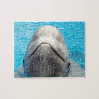 Rompecabezas presumido de la ballena de la beluga