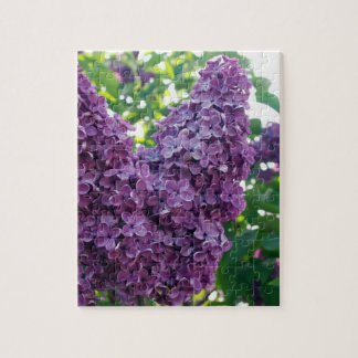 Rompecabezas púrpura de las lilas