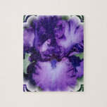 Rompecabezas púrpura del iris barbudo