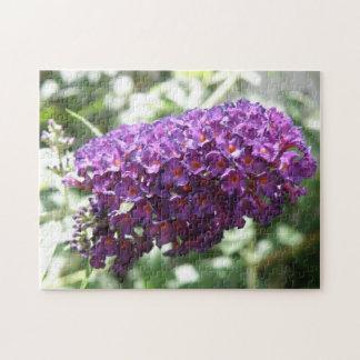 Rompecabezas púrpura hermoso de Fkowers del Buddle