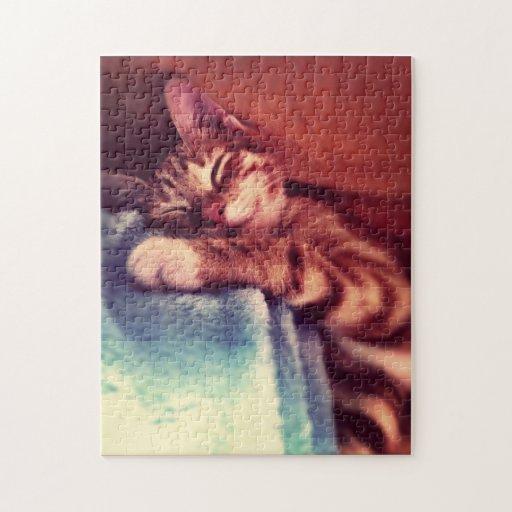 Rompecabezas soñoliento del gatito
