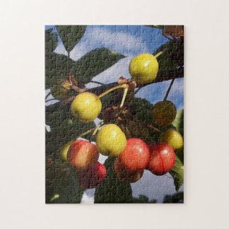 Rompecabezas temprano de las cerezas