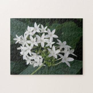 Rompecabezas tropical blanco hermoso de Fkowers